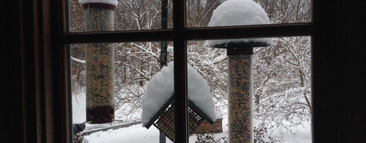 The F.U.N. Quotient… snowbound edition