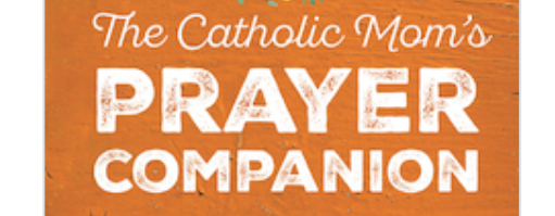 Here's a book some of us are very excited about… The Catholic Mom's Prayer Companion #CatholicMom